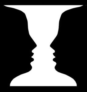 Diferencias en vista y visión aplicado a las terapias visuales y optrometria